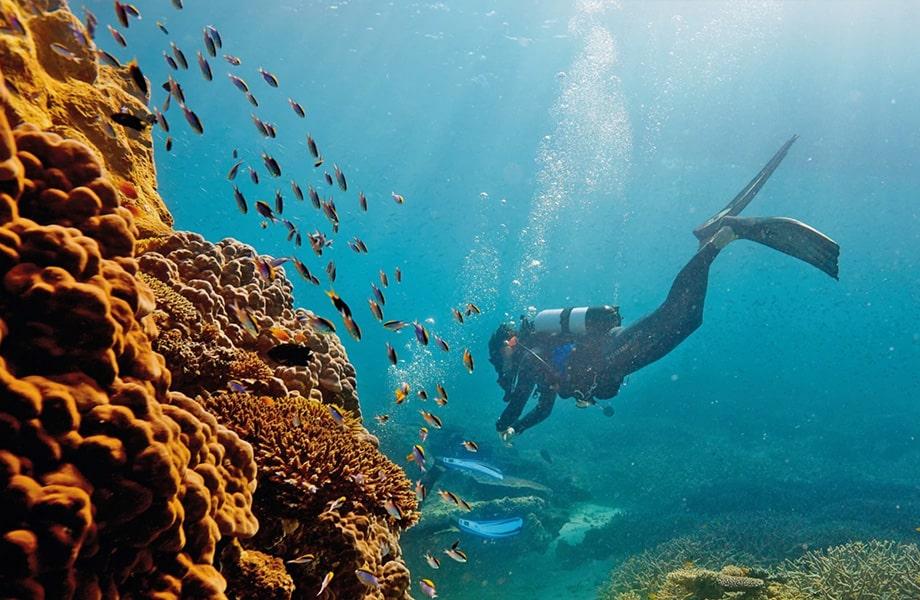 世界最大のサンゴ礁が見られる「グレートバリアリーフ」